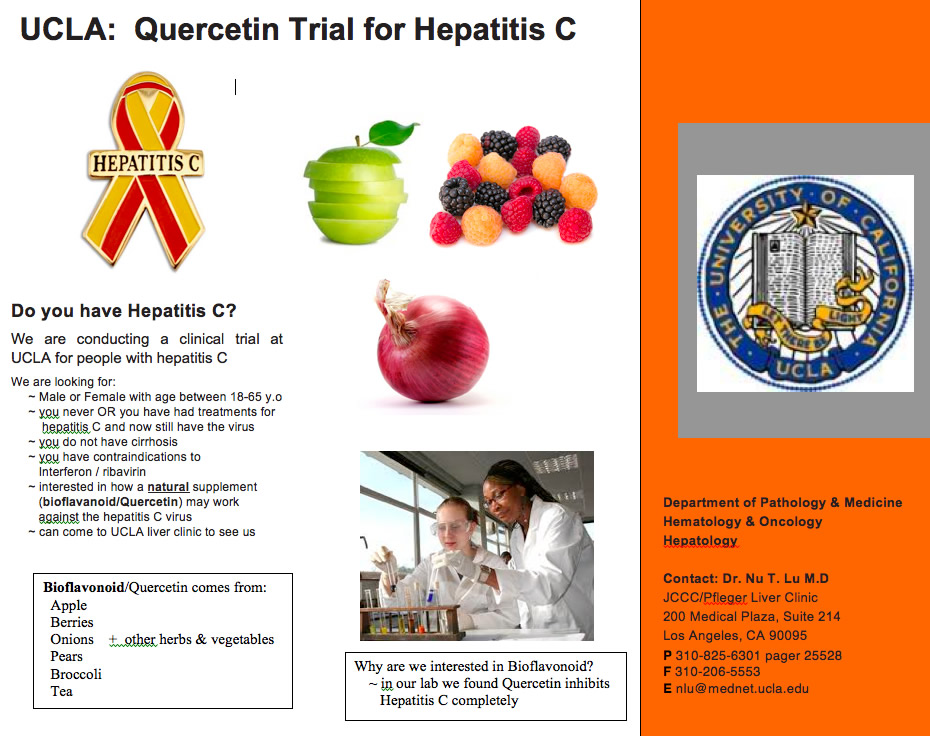 UCLA Quercetin Phase 1 Clinicial Trial flyer